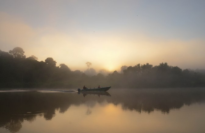 Wander Pi Wednesdays: Morning Mist in Borneo